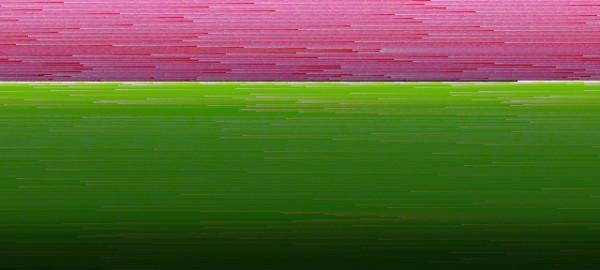 2010826215432colors